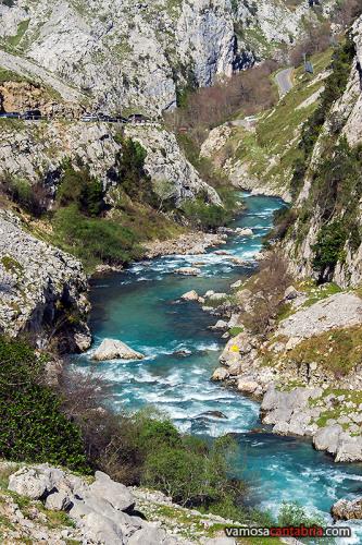 El río Cares en Poncebos