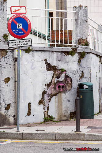 Pintada de un cerdo I
