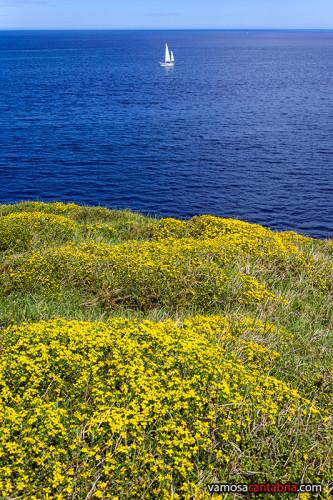 El mar desde lo alto de Punta Sonabia