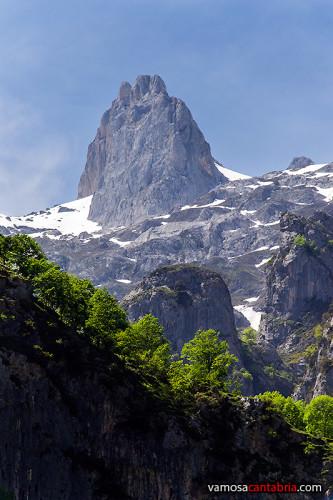 Montaña al fondo