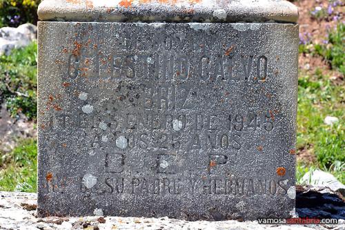 Placa en el monumento a Celestino Calvo