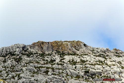 Montaña con buitre