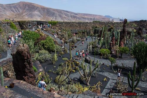Jardin de cactus en Lanzarote