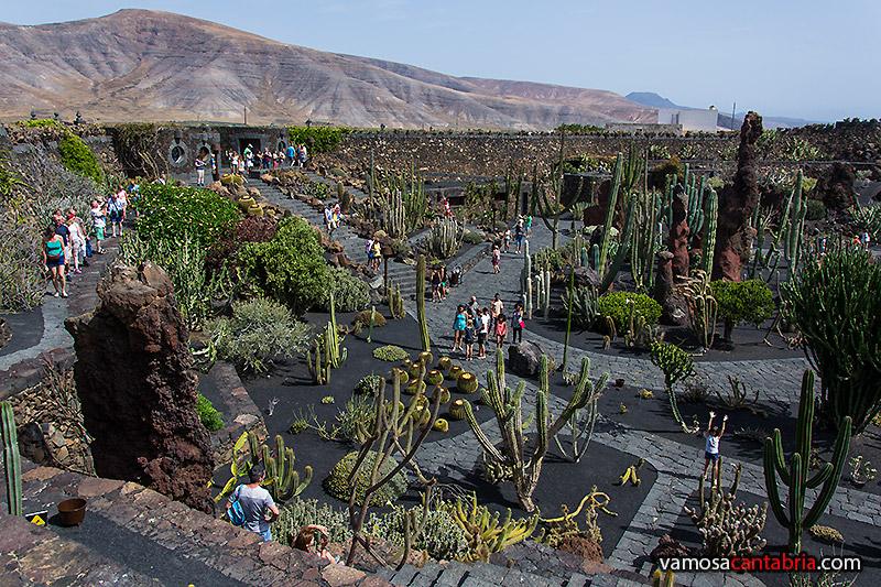 El jard n de cactus vamos a cantabria for Jardines pequenos redondos