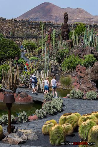 Paseando entre los cactus