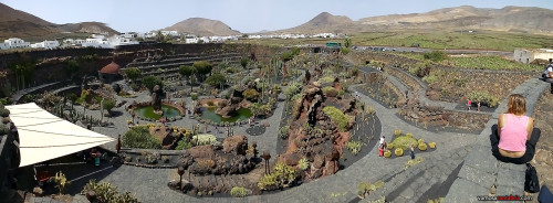 Panorámica del Jardin de Cactus